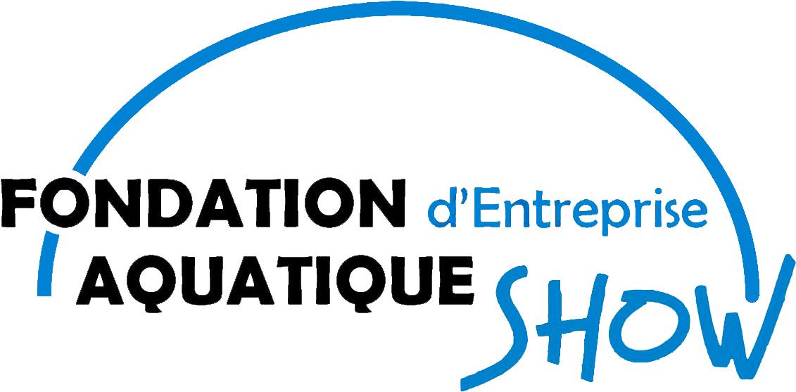 Fondation ASI logo ssfond